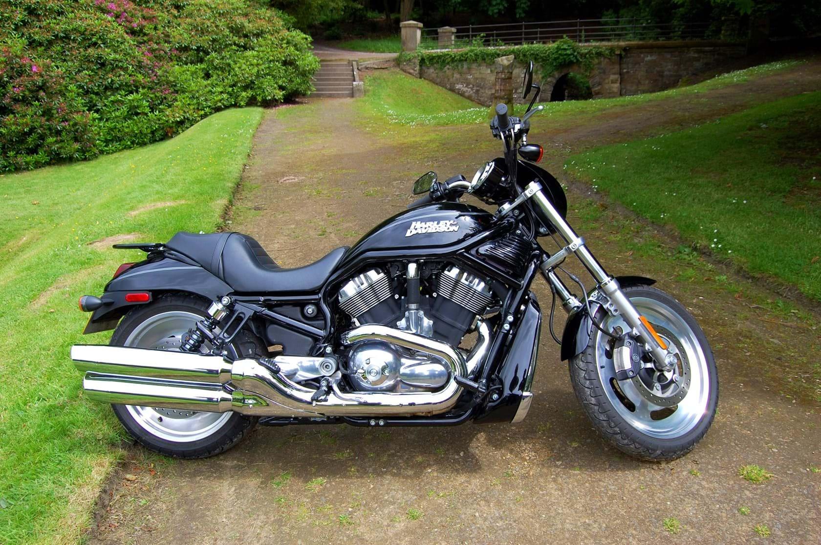 Harley Davidson V Rod Review O For Sale Price Guide The Bike Market