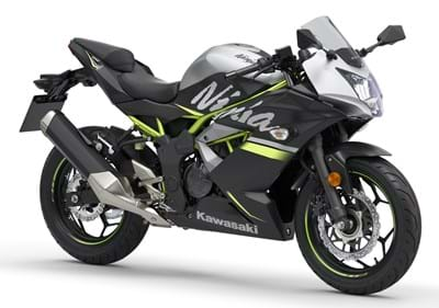 Kawasaki Ninja 125 (2018 On)