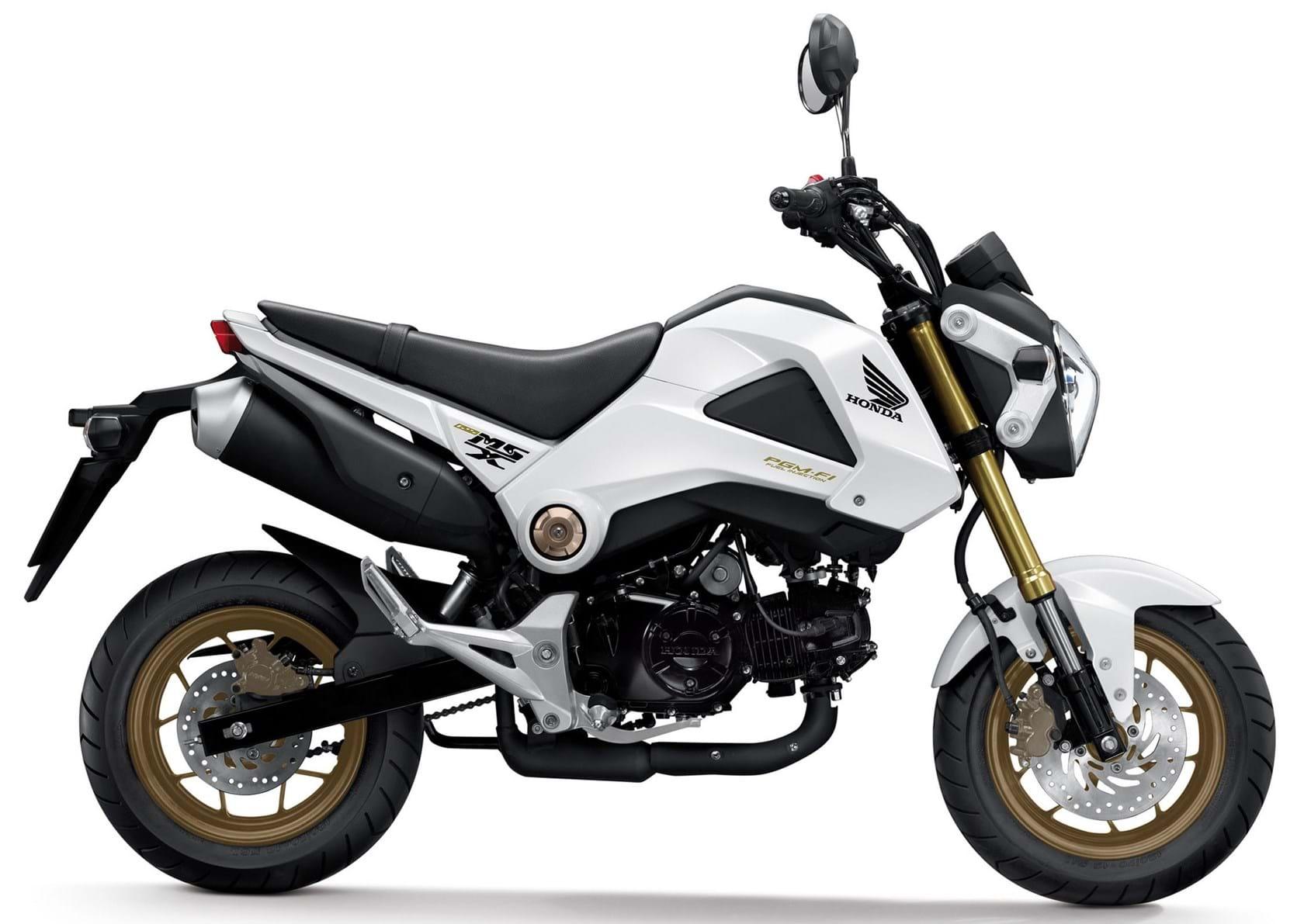 For Sale Honda Grom The Bike Market